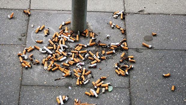 Lecce senza filtri: Monteco in piazza per informare i cittadini sull'inquinamento da cicche